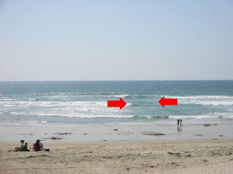 Muistromen of 'rip currents' kunnen heel verraderlijk zijn en zelfs geoefende zwemmers verrassen.