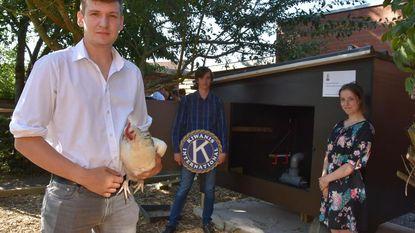 Leerlingen bouwen 'de Rolls-Royce onder de kippenhokken'