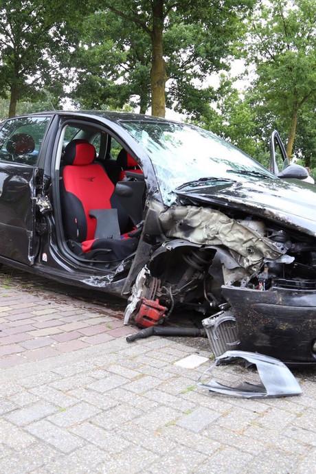 'Dwaze' dronken bestuurder is rijbewijs kwijt na klap tegen boom
