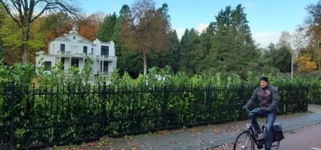 Het 'nieuwe gezicht' van Villa Blanca heeft een groene haag