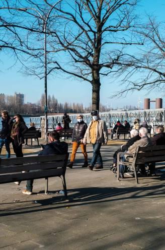 Antwerpse politie heeft handen vol tijdens alweer zonnig weekend: Steenplein afgesloten wegens drukte en feestvierder dreigt hond los te laten op politie
