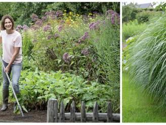Amper onderhoud, mooi in bloei: tuinexperte Laurence Machiels geeft 10 redenen om je tuin vol siergrassen te zetten