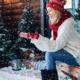 Kerstmis in 2017: laat je kerstboom thuisbezorgen