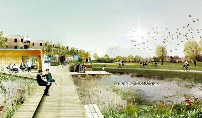 Zo wil de stad het woongebied Bellestraat-Zonneken: geconcentreerde woonzones en nog veel open, groene ruimte.