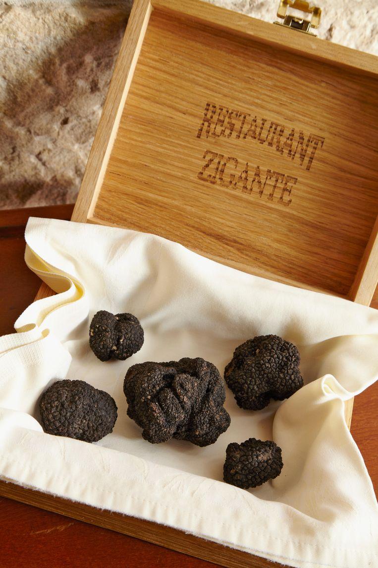 In restaurant Zigante in Livade maken de chefs elke dag zes truffelgerechten. Beeld Alamy Stock Photo