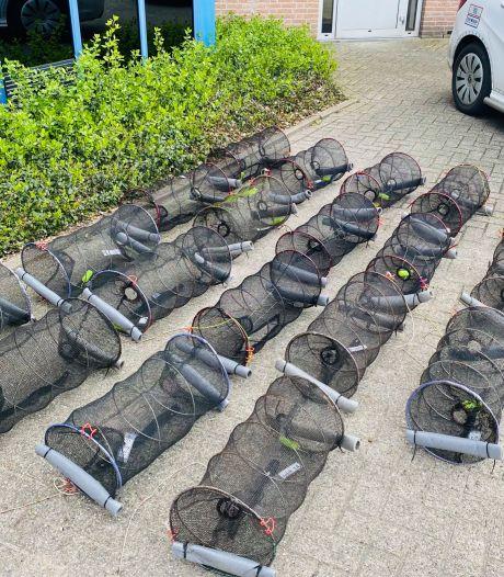 Man in Waalre gesnapt: illegaal in bezit van tientallen fuiken