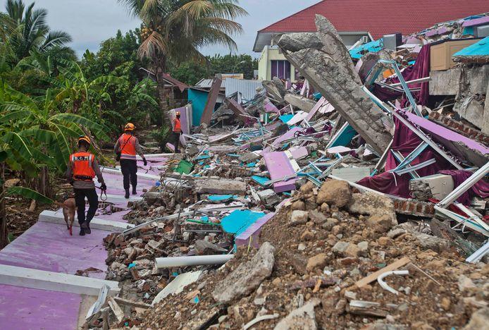 Reddingswerkers met een speurhond bij ingestorte gebouwen in Mamuju, de hoofdstad van West-Sulawesi.