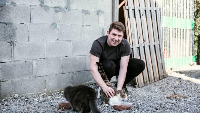 """Poetshulp Matthias (27) ontfermt zich over de zwerfkatten van Herk-de-Stad: """"Wij voorzien hen van een heerlijke maaltijd"""""""