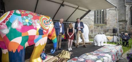 Zeven olifanten voor Tubbergen, Langeveen hoopt zich op de kaart te zetten met het kunstwerk