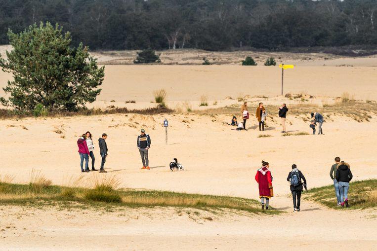 Dagjesmensen wandelen in natuurgebied de Loonse en Drunense Duinen.  Beeld ANP