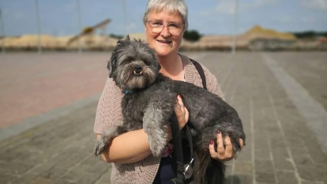 """Dit is Teuntje: """"Hij is misschien niet het mooiste hondje, maar hij is een echt fotomodel"""""""