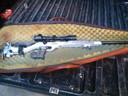 Freddy Janssen maakte tientallen foto's van wapens die wapenhandelaar Jan B. in bezit had.