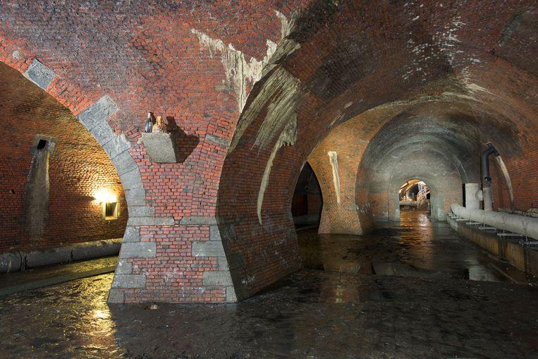 De Antwerpse ruien. Beeld rv