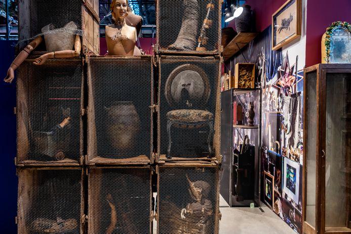 'Wunderkammer' met objecten uit de verzameling van Wijnand van Lieshout.
