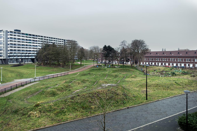 De E-buurt in Zuidoost. Rechts de wijk Emerald, links de flat Echtenstein.  Beeld Jakob van Vliet