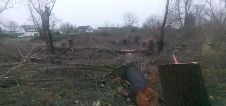 Onbekenden vernielen bosje in Beneden-Leeuwen: 'Dit is de brutaliteit ten top'