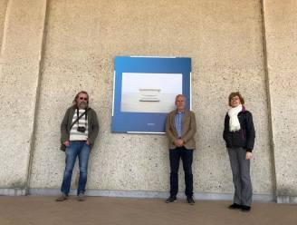 Humor, kleur en Belgische identiteit bij expo 'De Dijk' in de Nieuwe Gaanderijen