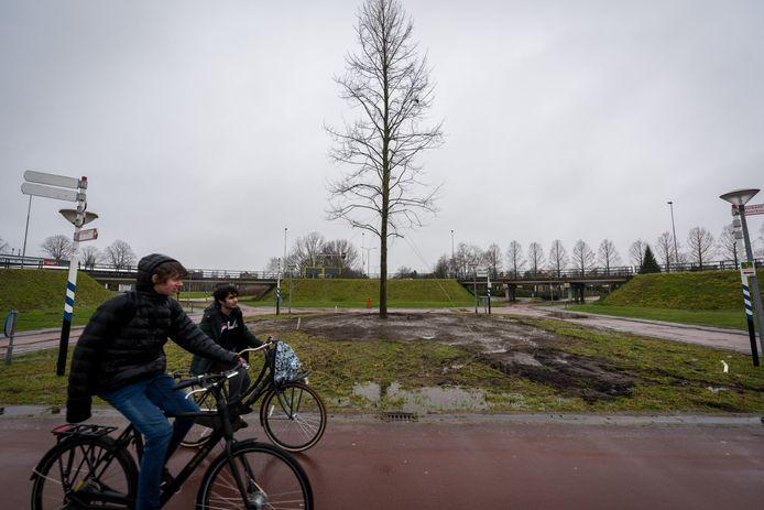 100 jaar Veldhoven wordt onder meer gevierd met een linde op een centrale plek in het dorp. De boom van 7000 kilo staat er sinds woensdag.