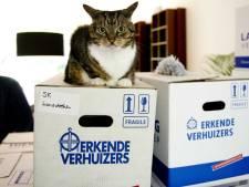 VVD: Help psychiatrische patiënten sneller aan woning