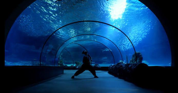 Dansen 'onder' het water.