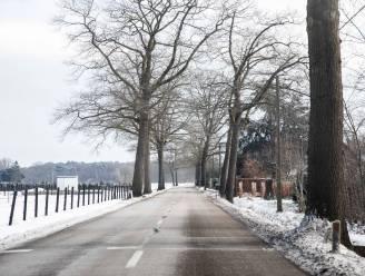 Volgende stap in fietspadenproject op N747 tussen Eksel en Kaulille, maar werken starten niet voor 2022