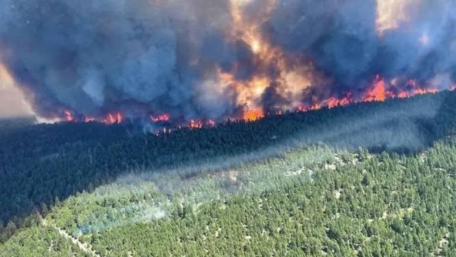 Recordhitte in Canada: brand vaagt dorp waar recordtemperatuur van 49,5 graden werd gemeten weg