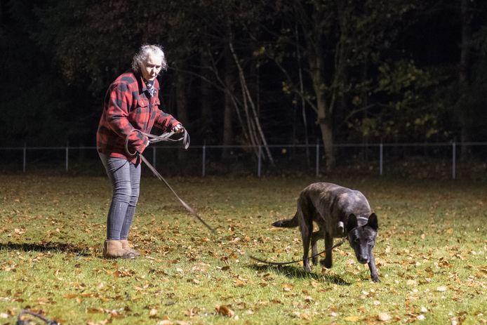 Tot 1 januari kan dit nog: training bij hondenvereniging De Trouwe Vriend langs de Harderwijkerweg in Hulshorst. Daarna moet de club van de gemeente Nunspeet z'n biezen pakken.