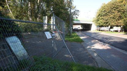 Vlaamse overheid wil doortrekkersterrein weg uit Huizingen