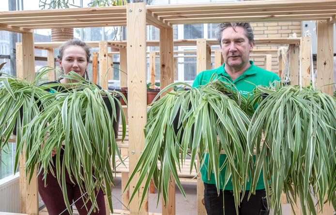 Wie van zijn plant af wil, of juist een nieuwe zoekt, kan vanaf deze week ook terecht bij het Thorbecke Praktijkonderwijs in de Pierik in Zwolle. Daar komt een tweede locatie van het Plantenasiel.