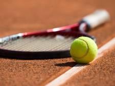 Tennissers en hockeyers willen geld van gemeente Nieuwkoop