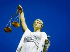Taakstraf voor Boskoper die zijn zoon in het gezicht sloeg