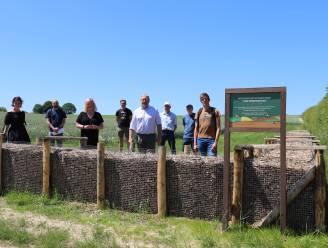 Gemeente zet blijvend in op erosiebestrijding: derde houthakseldam in Lennik heeft nut nu al bewezen