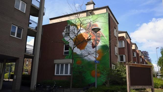 Bijenvriendelijke muurschildering in wijk Mannenstraat