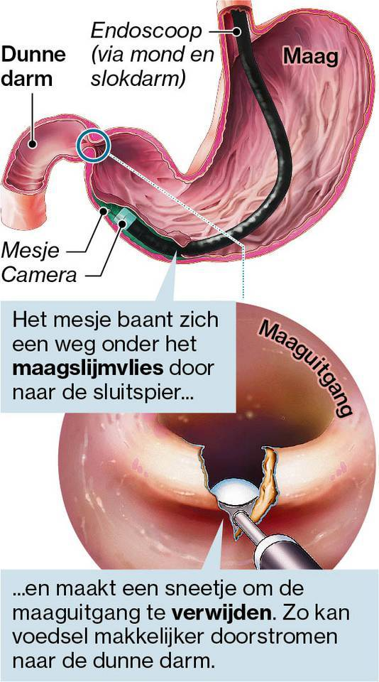 Erikwallert.nl