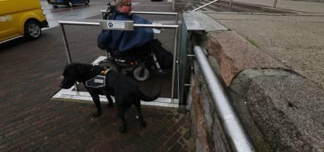 Hulphond in de knoop bij gehandicaptenlift stadhuis: 'Ben bang dat Bolan eraf valt'