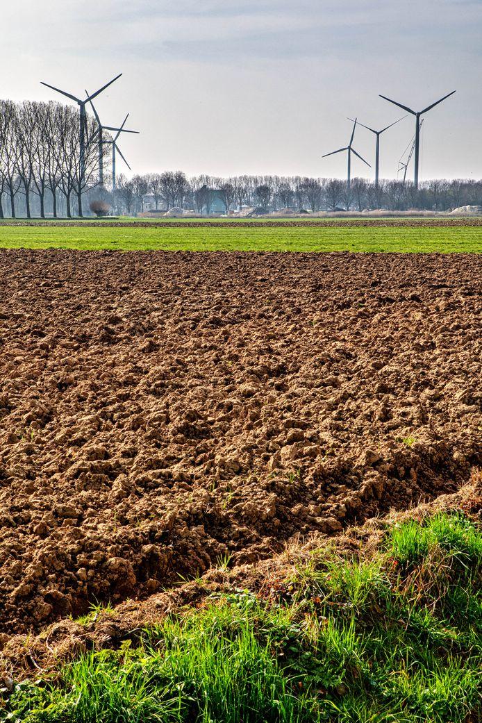 De Oranjepolder bij Oosterhout met op de achtergrond de windmolens die op industrieterrein Weststad staan.