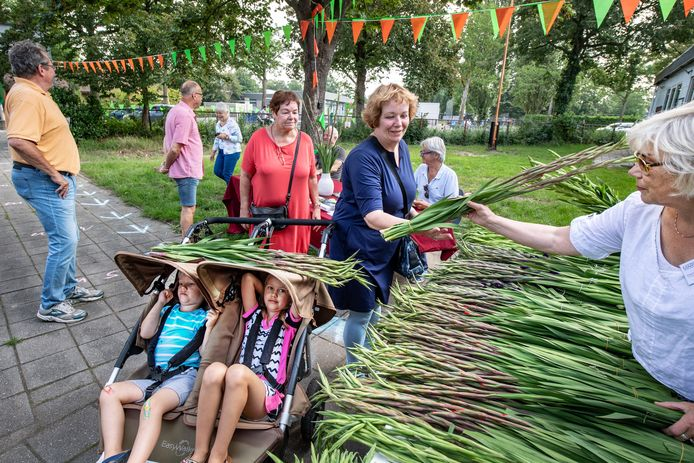 Vrijwilligers van het Marikenhuis verkopen gladiolen, aan jong en oud.