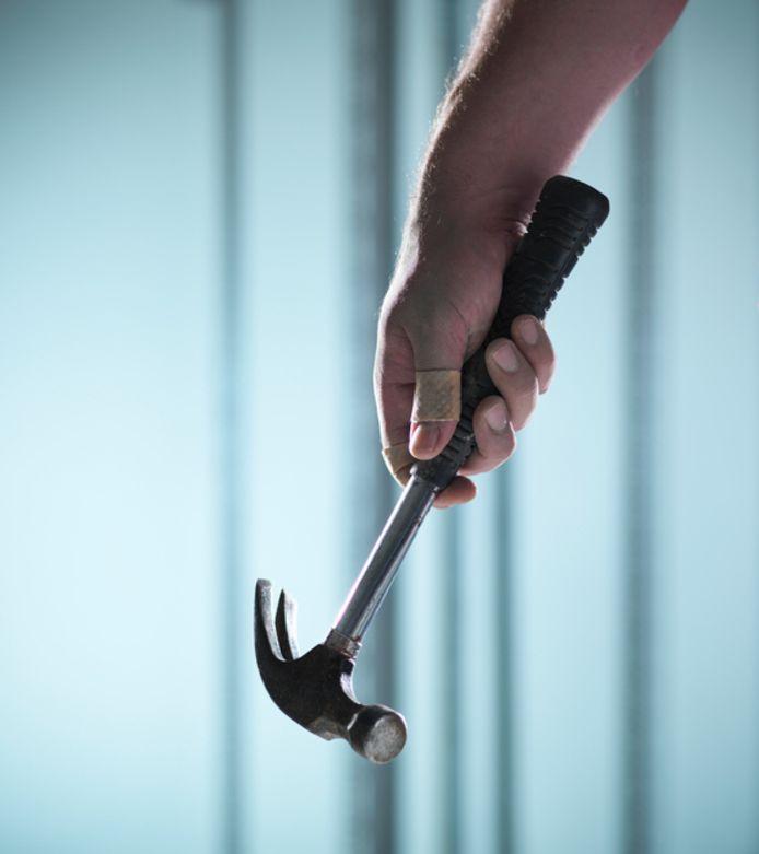 hamer klauwhamer claw hammer