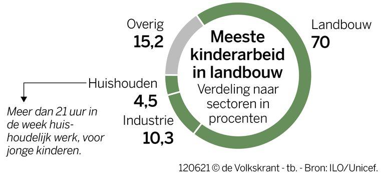 Grafieken kinderarbeid wereldwijd Beeld VK Infographics