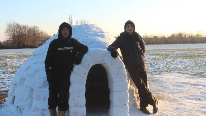 Alsof Pingu er straks komt uitgestapt: Jef en Michiel bouwen perfecte iglo van bijna 2 meter hoog