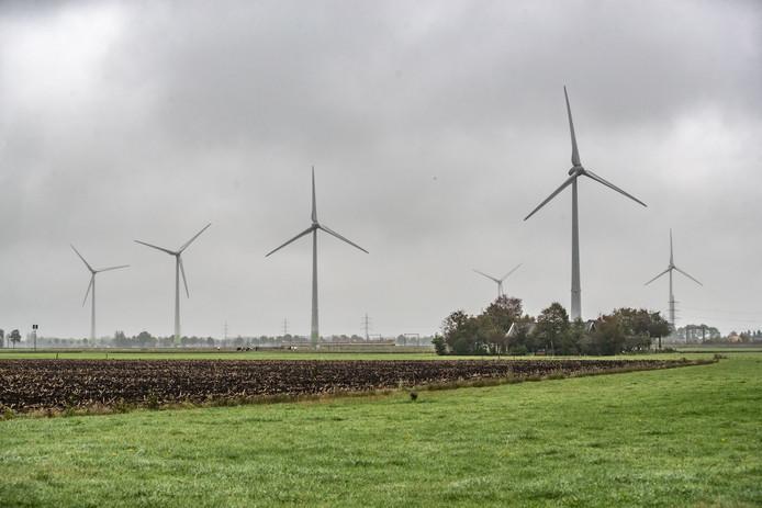 Windmolens in het gebied de Tolhuislanden.