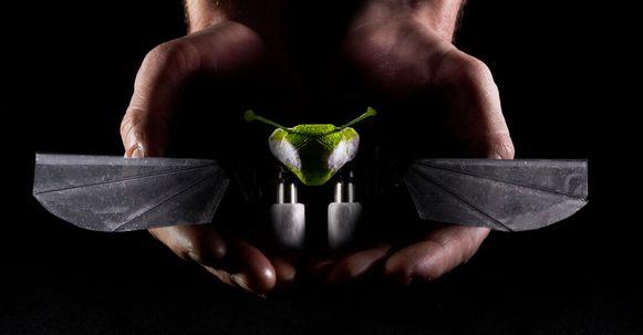 De Robo Firefly vliegt op exact dezelfde manier als een insect.