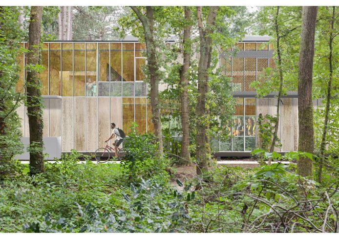 Het schoolgebouw gaat op in het bos en verzamelt alle klassen onder één dak.