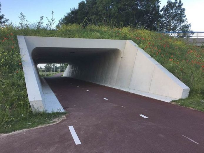 Zo zou de duiker eruit kunnen komen zien, onder de Kempenweg in Oirschot.