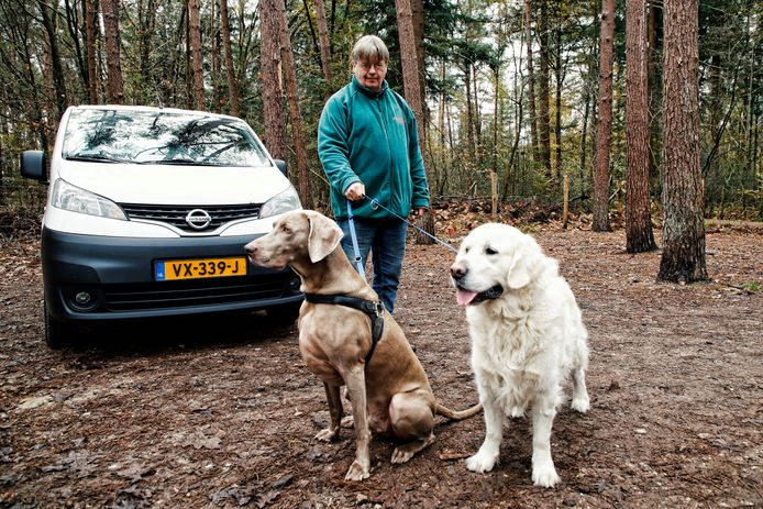Erik Nieswaag van uitlaatservice Snuffel laat z'n honden uit in een speciaal omheind gebied op landgoed Pijnenburg.