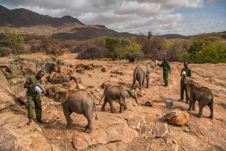 Foto uit de reeks van Ami Vitale voor 'National Geographic'. Beeld EPA