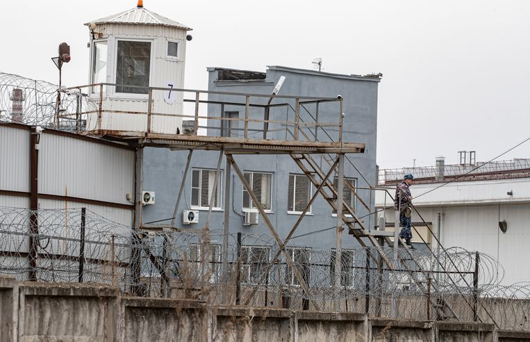 De strafkolonie in Vladimir waar Navalny zou worden verzorgd. Beeld EPA