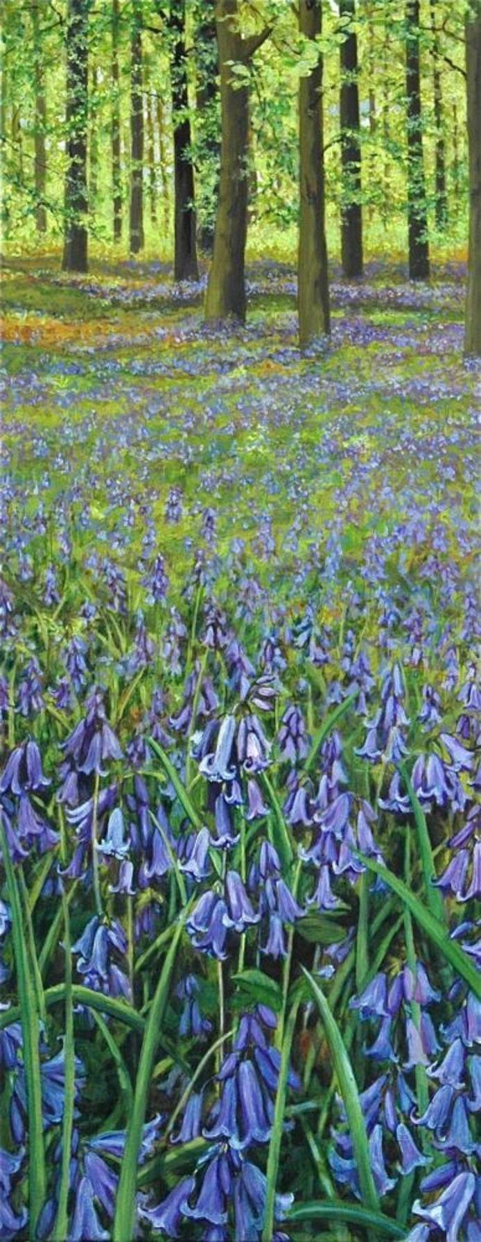 Engels bos met 'blue bells'. Vormt tevens de coverafbeelding op de uitnodiging voor de expositie.