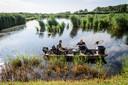 Medewerkers van het waterschap Vechtstromen halen dode watervogels op.