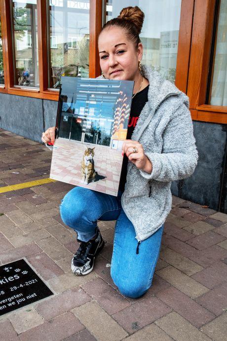 Bewoners missen buurtkat Dickies en maken herinneringssteen: 'Zo is hij toch nog een beetje bij ons'